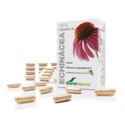 Cápsulas 16S Echinacea Soria Natural