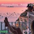 Adiós mosquitos…hola verano!